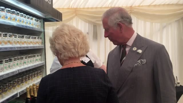 prince charles visits a yogurt factory in aberystwyth. charles toured rachel's organic factory and officially opened the firm's new extension. - aberystwyth stock videos & royalty-free footage