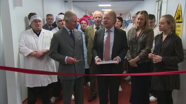 vídeos de stock e filmes b-roll de prince charles visits chocolate factory ***beware prince charles in corridor with others uses scissors to cut ceremonial ribbon / prince charles... - evento de abertura