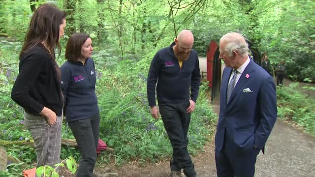 prince charles visits slieve gullion forest park in county armagh; northern ireland: county armagh: slieve gullion forest park: ext further shots of... - county armagh stock videos & royalty-free footage