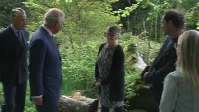 prince charles visits slieve gullion forest park in county armagh; northern ireland: county armagh: slieve gullion forest park: ext various of prince... - county armagh stock videos & royalty-free footage