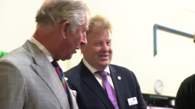 prince charles visits the royal mint in llantrisant various of prince charles watching coins being minted / coins dropping into container from mint /... - royal mint stock videos & royalty-free footage