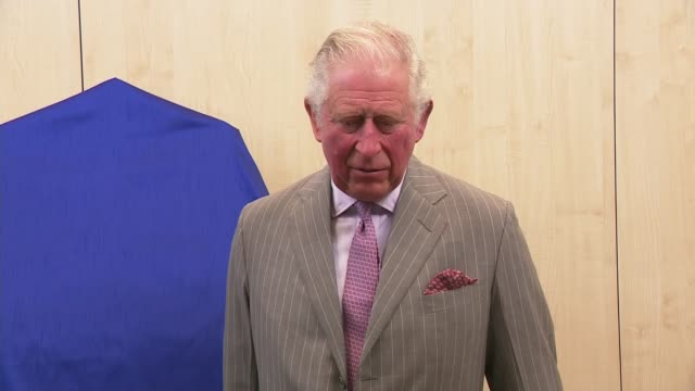 prince charles visits whittle laboratory in cambridge; england: university of cambridge: whittle laboratory: int **beware flash photography** prince... - prinz von wales stock-videos und b-roll-filmmaterial