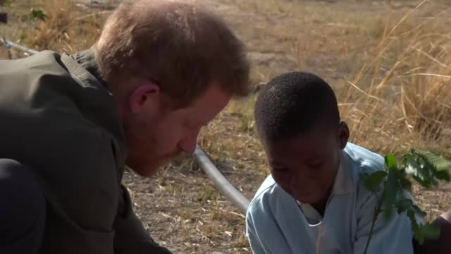 prince harry calls for climate change action during visit to botswana; botswana: ext prince harry, duke of sussex interview sot cutaways various of... - ボツワナ点の映像素材/bロール