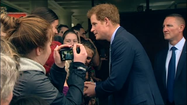 vídeos de stock, filmes e b-roll de prince harry greeting wellwishers and shaking hands over partition fence - reportagem imagem
