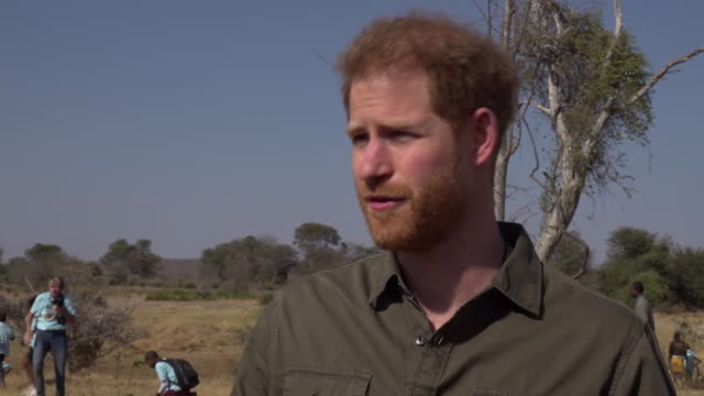 prince harry has said that the science on the climate crisis is 'undeniable' warning that there is now a race against time which is being lost he was... - danger stock videos & royalty-free footage