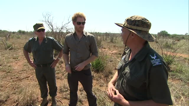 vidéos et rushes de prince harry shown the horrors of rhino poaching at kruger national park shows exterior shots prince harry talking with park rangers on december 02... - 2015