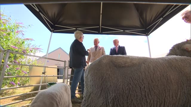 prince of wales and camilla visit cornwall st agnes visit england cornwall st agnes finisterre company ext prince charles prince of wales and duke of... - cornwall england stock-videos und b-roll-filmmaterial