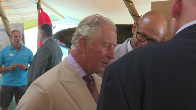 prince of wales and camilla visit cornwall st agnes visit england cornwall st agnes prince charles prince of wales and duke of cornwall talking to... - cornwall england stock-videos und b-roll-filmmaterial