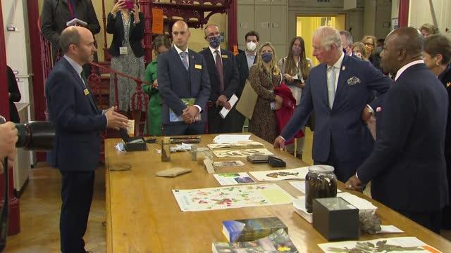 prince of wales visits kew gardens; england: london: kew: royal botanic gardens: int prince charles, prince of wales and ali bongo ondimba with group... - ecosystem stock videos & royalty-free footage