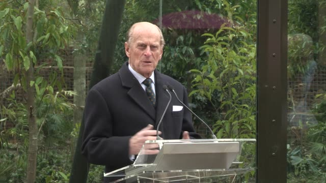 prince philip at tiger territory royal opening at london zoo on march 20 2013 in london england - エジンバラ公爵点の映像素材/bロール
