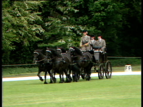 prince philip drives his carriage and prepares to compete in the windsor horse trials - ウマ科点の映像素材/bロール