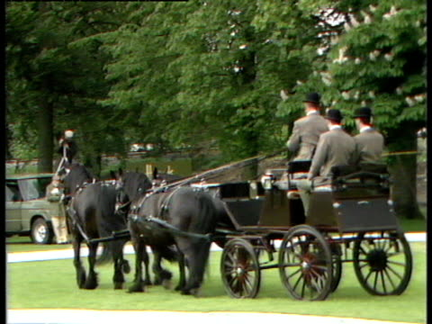 prince philip practices and prepares to compete in the windsor horse trials - carriage stock videos and b-roll footage