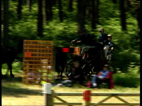 prince philip riding around obstacle course in carriage driving trials; england: hampshire: farleigh wallop: ext general views and high angle shots... - 四輪馬車点の映像素材/bロール