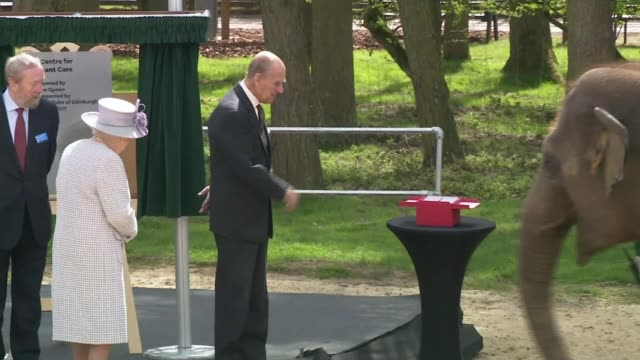 prince philip to step down from public engagements prince philip to step down from public engagements lib tx 1142017 / r110417001 bedfordshire... - duke of edinburgh stock videos and b-roll footage