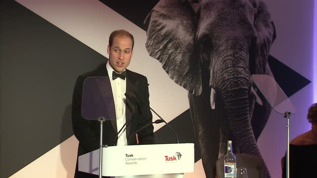 Prince William attends Tusk Trust gala Shows interior shots Prince William making speech thanking people involved in conservation on November 24 2015...