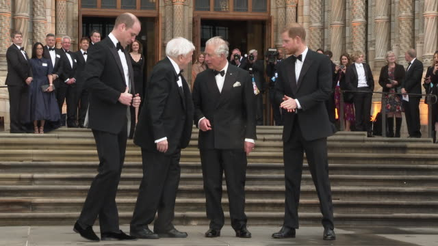 prince william duke of cambridge david attenborough prince charles prince of wales prince harry duke of sussex at 'our planet' global premiere on... - prince harry stock videos & royalty-free footage
