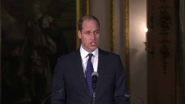prince william has unveiled a new initiative to stop animal smuggling by getting airlines, shipping companies and charities to share information and... - five animals stock videos & royalty-free footage
