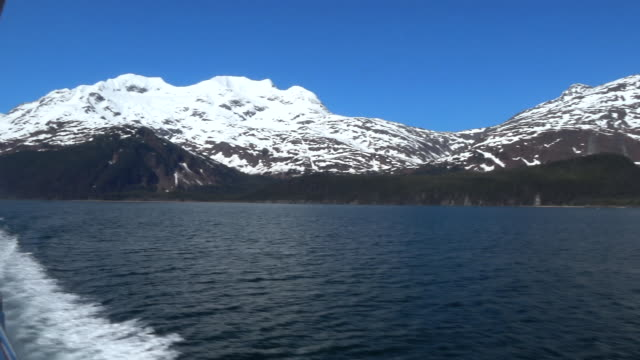 prince william sound whittier alaska by boat - prince william stock videos & royalty-free footage