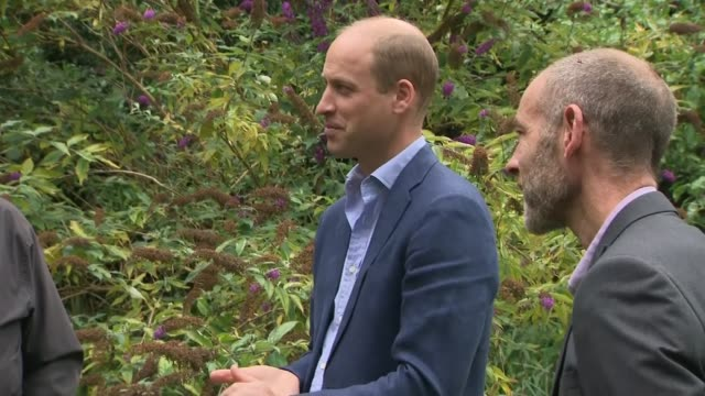 prince william visits dropin centre for the homeless people in peterborough part cambridgeshire peterborough garden house ext further shots of prince... - gift stock videos & royalty-free footage