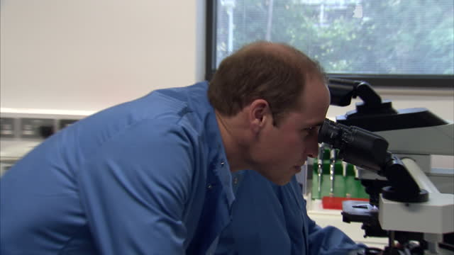 prince william visits the royal marsden nhs foundation shows interior shots prince william looking at specimen sample through a microscopeon november... - greater london stock videos and b-roll footage