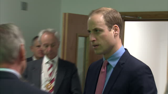 prince william visits the royal marsden nhs foundation shows interior shots prince william being introduced to people by cally palmer on november 18... - greater london stock videos and b-roll footage