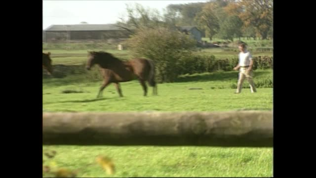 princes leave balmoral / gvs of parker bowles family and house england wiltshire andrew parker bowles with woman in field as collect horses lead to... - barn stock videos & royalty-free footage