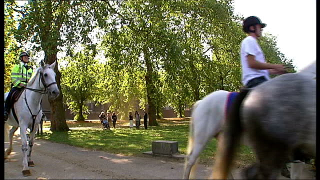 Prince's Trust charity horse ride GVs white horses groomed and exercised Hyde Park EXT Various shots of horses being exercised in park