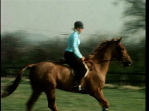 princess anne trains; c) england, nr. windsor: ext zoom princess anne rides through gate r-l to bv: canters l-r: trots r-l: ditto: gv mrs alison... - all horse riding stock videos & royalty-free footage
