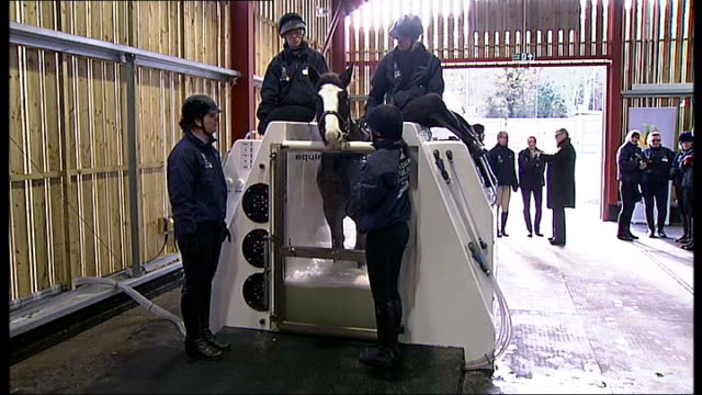 Princess Anne visits newly opened equestrian centre in Greenwich ENGLAND London Greenwich EXT GVs Horse in equine hydrotherapy spa at new equestrian...