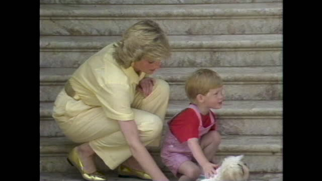 princess diana picks up prince harry and puts him down to pet a puppy dog at a photocall during a summer holiday with the spanish royals in majorca. - jungtier stock-videos und b-roll-filmmaterial