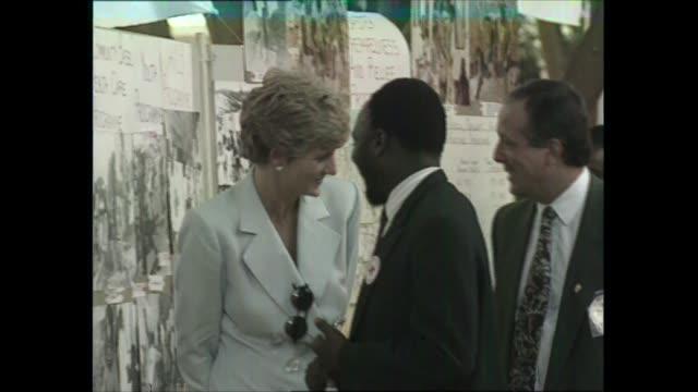 princess of wales zimbabwe tour: day one: red cross leprosy mission visit; zimbabwe: red cross leprosy mission: diana, princess of wales looking at... - repubblica dello zimbabwe video stock e b–roll