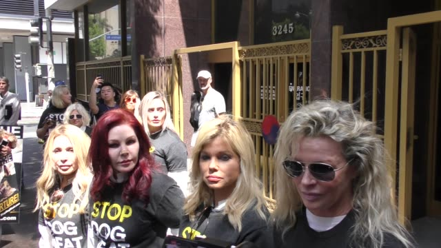 priscilla presley, kim basinger, donna d'errico & e.g. daily attend a silent demonstration to end the dog meat trade of south korea in los angeles in... - プリシラ プレスリー点の映像素材/bロール
