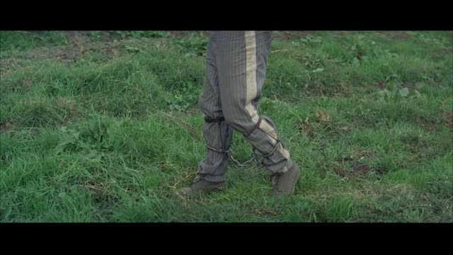 1967 MS Prisoner with shackled legs cutting grass with sickle, low section