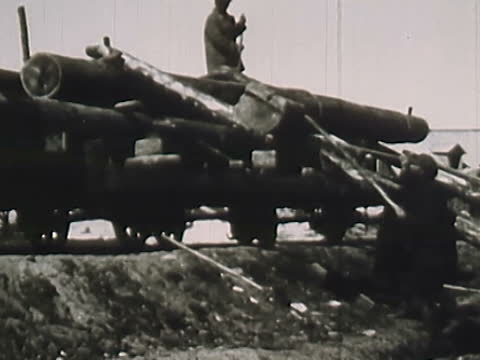 prisoners loading timber in solovki special prison camp - prison camp stock videos & royalty-free footage
