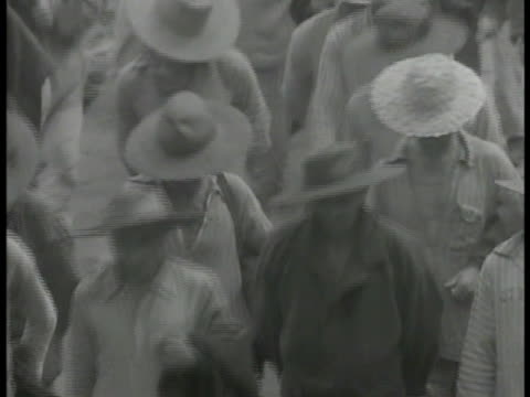 vidéos et rushes de prisoners walking in group down frame, most in hats, stripped clothing. light work: prisoners working on wicker furniture, working in garden, digging... - dom tom