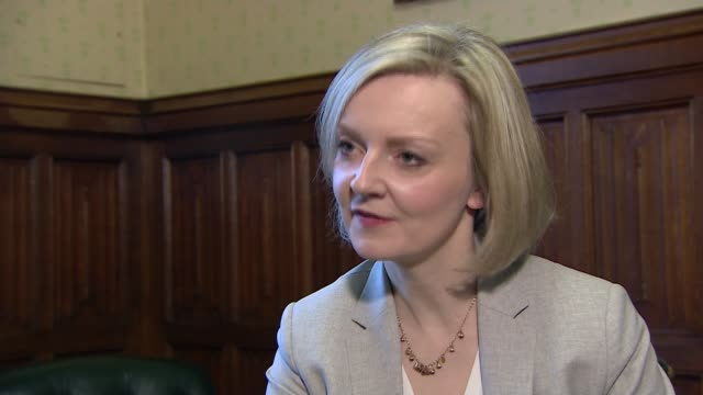 prisons and courts bill prisons and courts bill london liz truss mp interview sot we need to make sure that when they leave prison they are likely to... - prison education stock videos & royalty-free footage