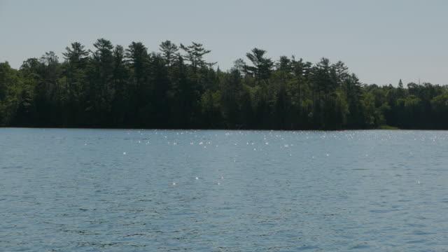 pristine northern lake - seeufer stock-videos und b-roll-filmmaterial