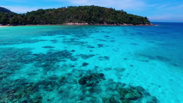 vídeos y material grabado en eventos de stock de pristine waters of ko racha island thailand. - cnidario