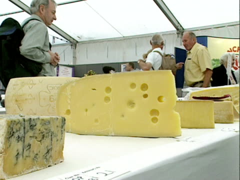 prize winning cheeses are displayed at a cheese fair, nantwich; 2000 - ナントウィッチ点の映像素材/bロール