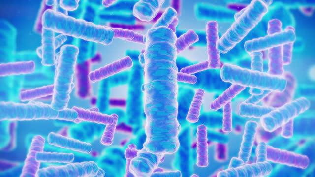 vidéos et rushes de probiotique - micro organisme