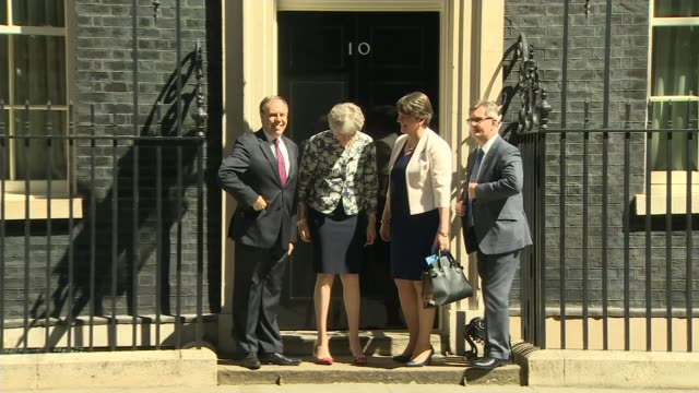 pro-brexit donation at centre of transparent funding row; lib / t26061702 england: london: downing street: ext theresa may mp photocall on steps of... - dup stock-videos und b-roll-filmmaterial
