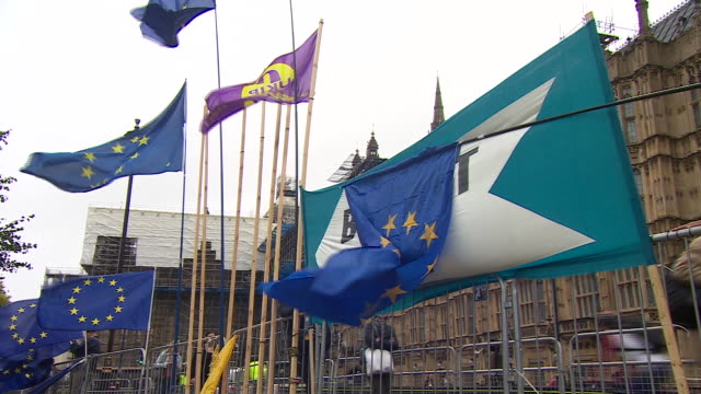 pro-brexit supporters protesting outside the houses of parliament - brexit stock videos & royalty-free footage