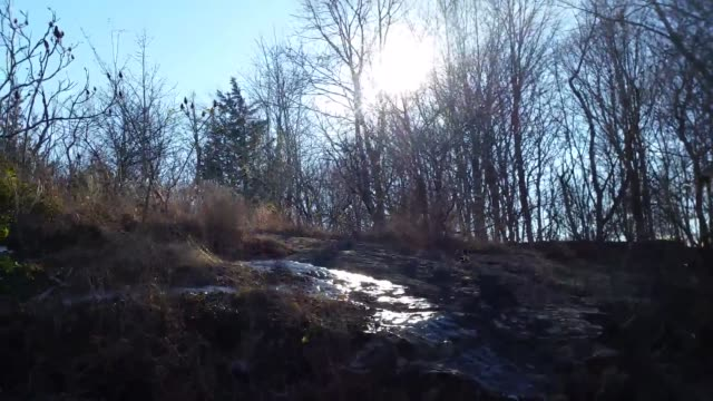 proctor's ledge is the site of salem hangings - salem massachusetts stock videos & royalty-free footage