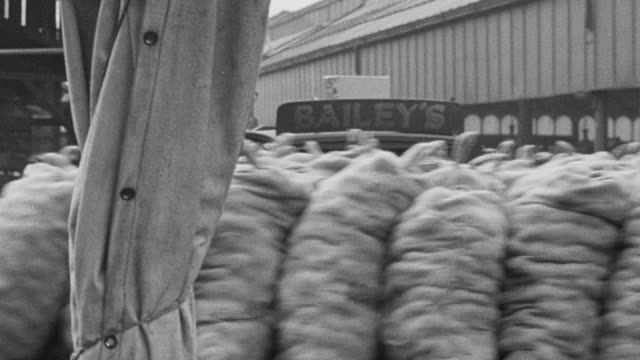 montage produce being taken to market and sold to consumers / manchester, england - 1943 stock videos & royalty-free footage