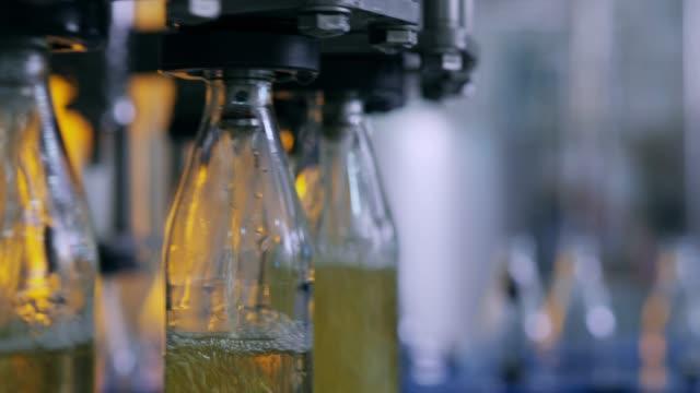 炭酸飲料の生産ライン。アルコール飲料の生産工程。 - コンベヤーベルト点の映像素材/bロール