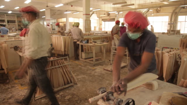vídeos de stock, filmes e b-roll de production of cricket bats sanspareils greenlands pvt factory in meerut uttar pradesh india on friday march 30 2018 - árvore de folha caduca