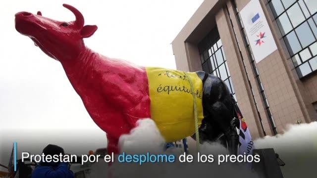 productores de lácteos cubrieron de blanco el lunes la entrada del consejo europeo en bruselas tras esparcir kilos de leche en polvo para reclamar un... - entrada stock videos and b-roll footage