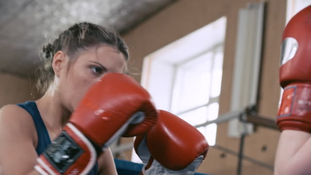 Professional female boxers in fighting