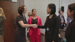 Professional greeting multi-ethnic executives