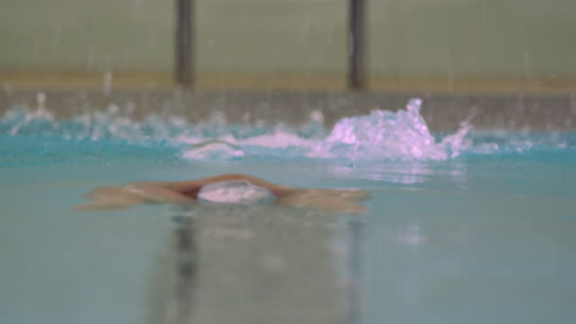 slo mo. a professional swimmer dives into an indoor olympic sized swimming pool and swims the butterfly stroke down a swimming lane towards the camera - butterfly stroke stock videos and b-roll footage